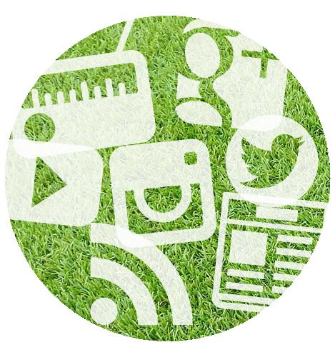 grass social media